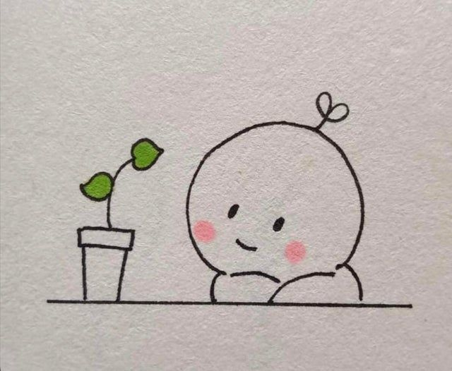 when you get a new plant
