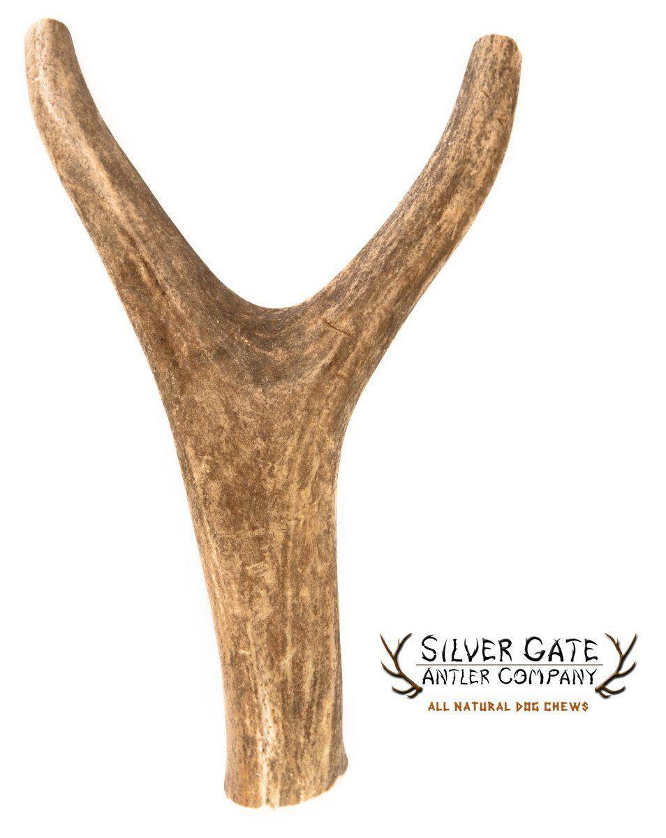 Silver Gate Antlers Deer Antler Fork Dog Chews X Large 7 10
