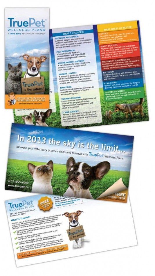 TruePet Wellness Plans Print Material #HealthyPet #veterinary #webdesign