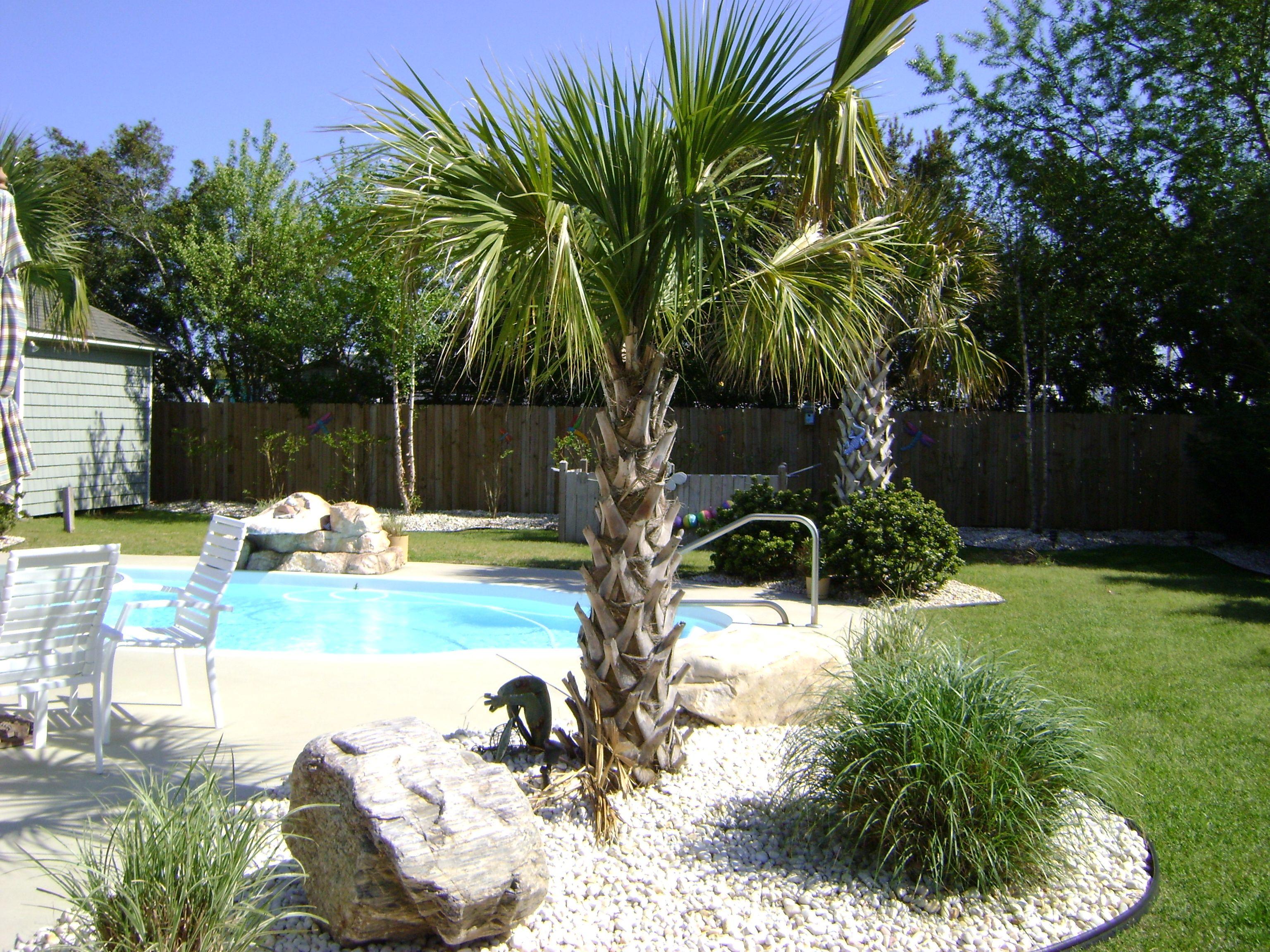 landscape lighting around pool Outdoors Pinterest