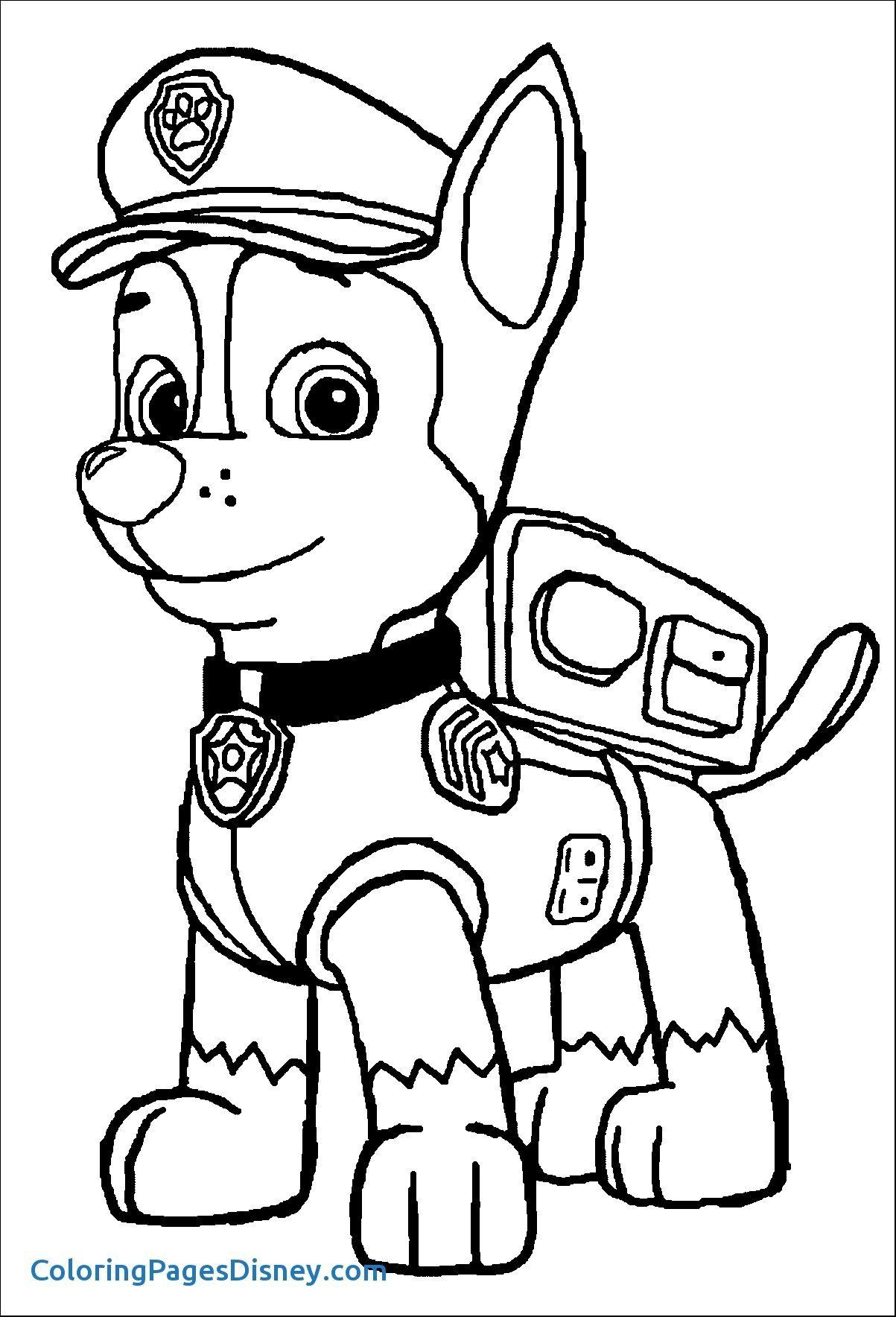 Paw Patrol Coloring Pages Zuma Coloring Pages Coloring Paw Patrol Book To Print Free Paw Patrol Coloring Pages Halloween Coloring Pages Paw Patrol Coloring