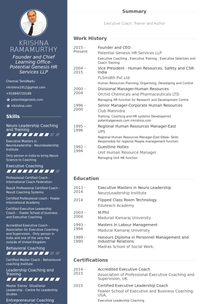 Founder And Ceo Resume Example