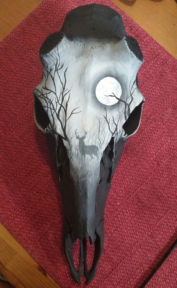 Painted Skull Ideas : painted, skull, ideas, Skull, Painting, Ideas, Painting,, Skull,