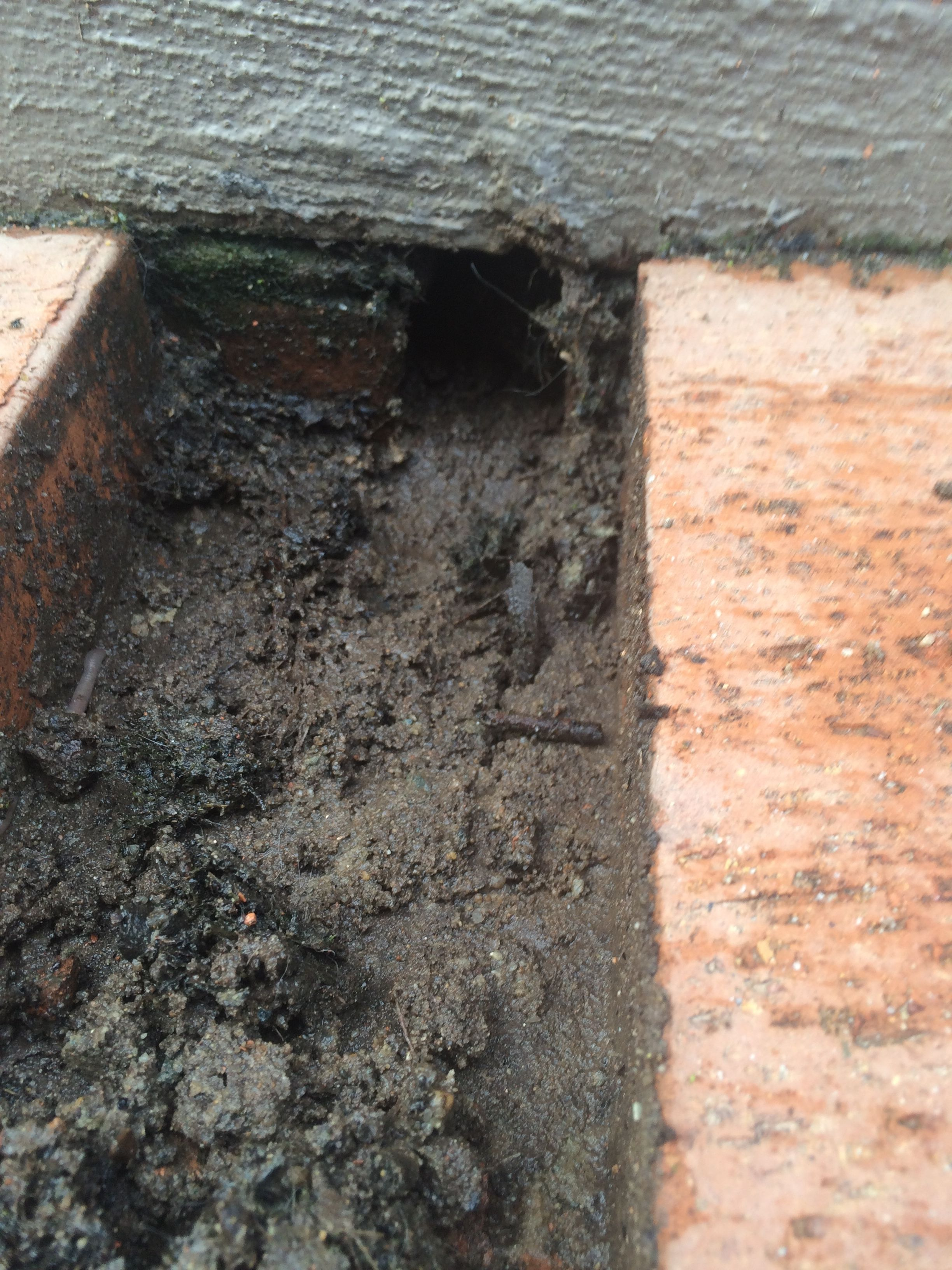 Weep holes in retaining wall are below the paver level causing the