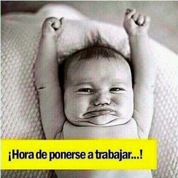 Pin By Eduardo Lalo On Puma Chavez Funny Good Morning Memes Work Memes Funny Babies