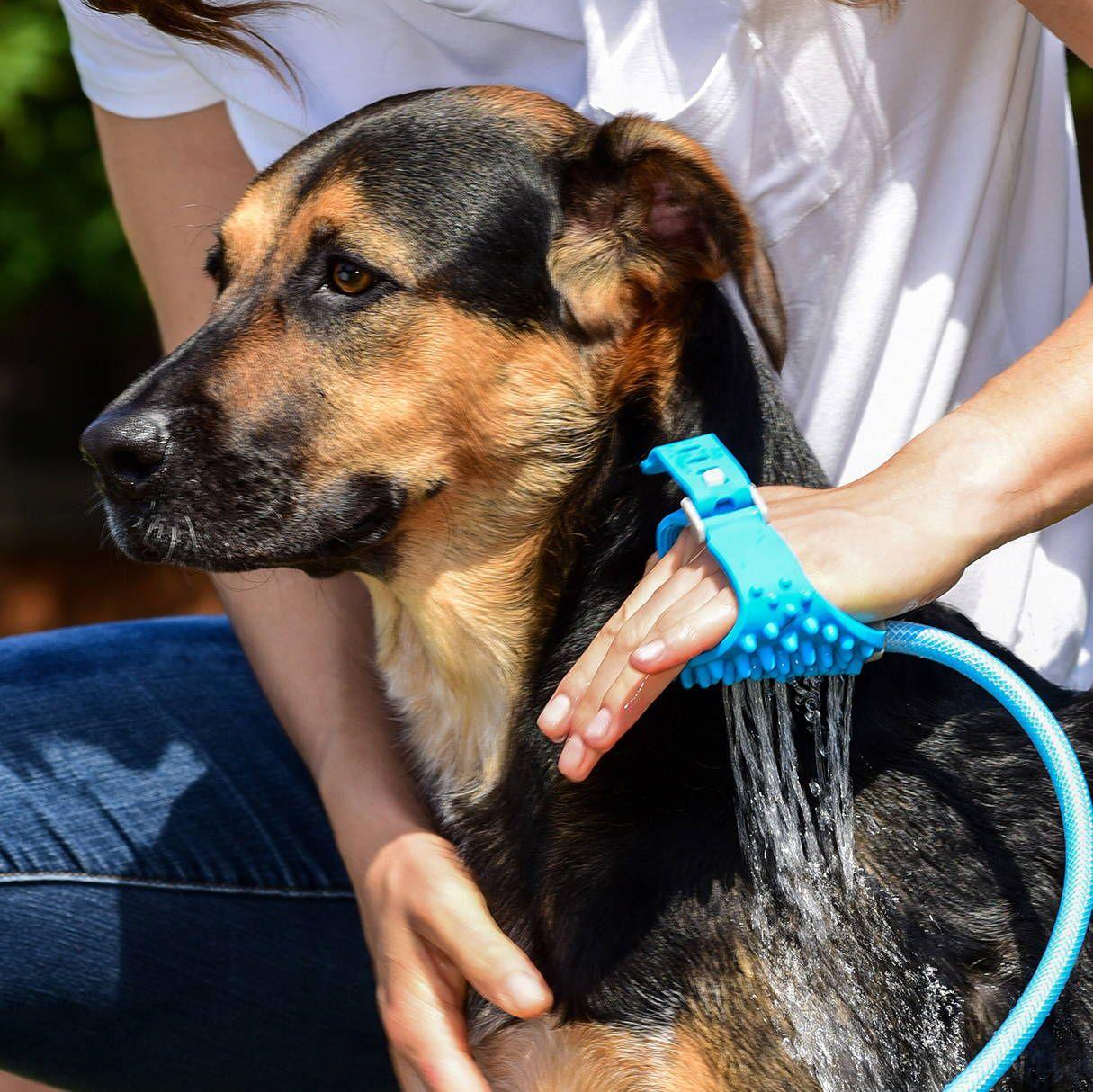 Pet Shower Glove Ndash Sugarcola Pet Mom Dog Shower Dogs