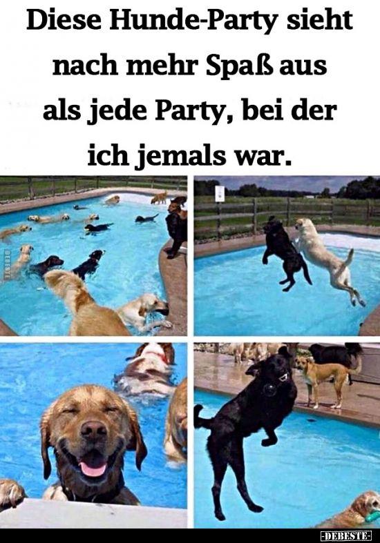 Lustige Bilder Party