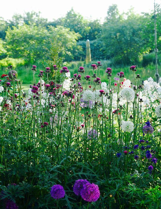 Angela Collins Garden Design - House  Garden, The List Summer