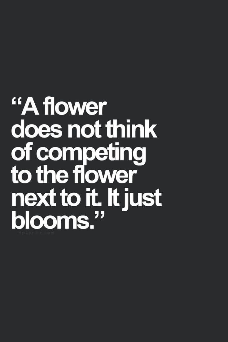 Best Sayings In The World Flower  Quotes  Pinterest  Flower Wisdom And Smart Quotes