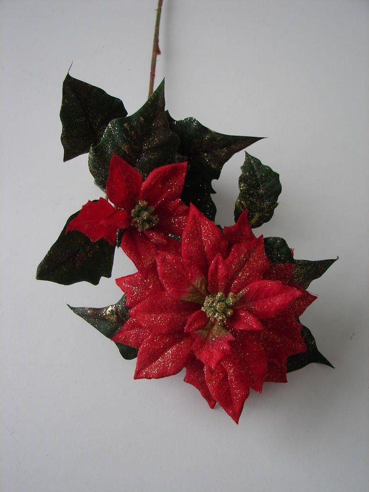 1 Karton mit 36 Pflanzen Weihnachtsstern Poinsettia