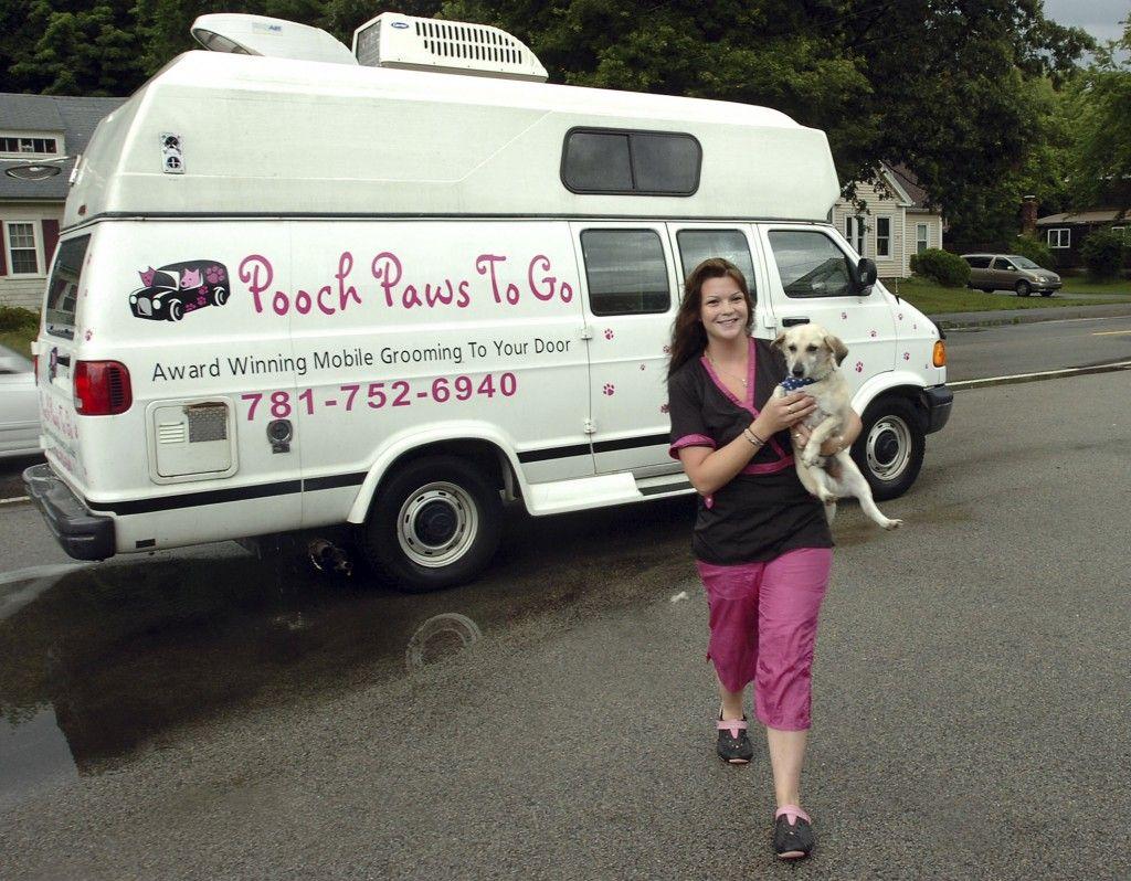 Dog Training School Mobile Pet Grooming Pet Grooming Business Dog Grooming Salons