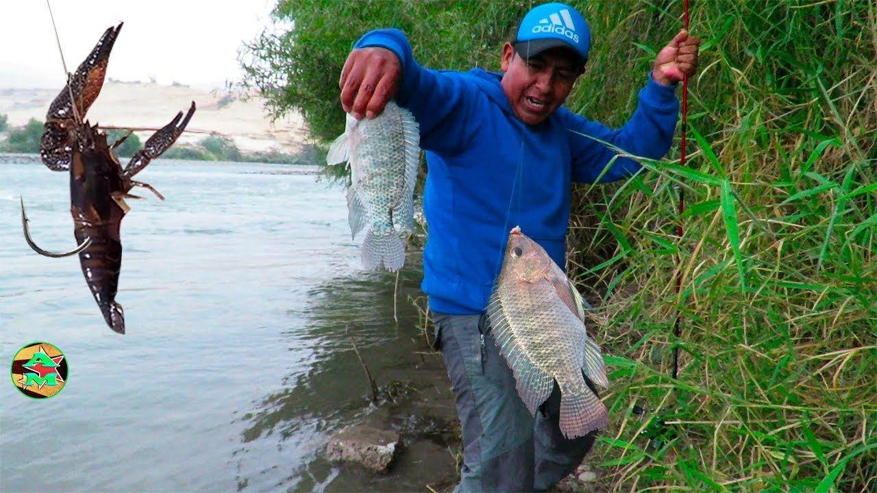 Pin en And Moll Pesca En Ríos Y Mares Vídeos de pesca