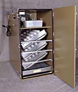 Classic GQF Model 1202A Sportsman Cabinet Style Egg Incubator at ...