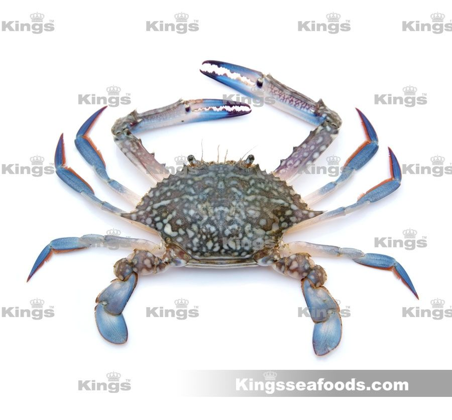 Blue Crab cleaned (நீலநண்டு) Fresh seafoods at your