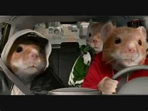 I Love These Gangsta Hamsters Kia Soul Kia Hamster