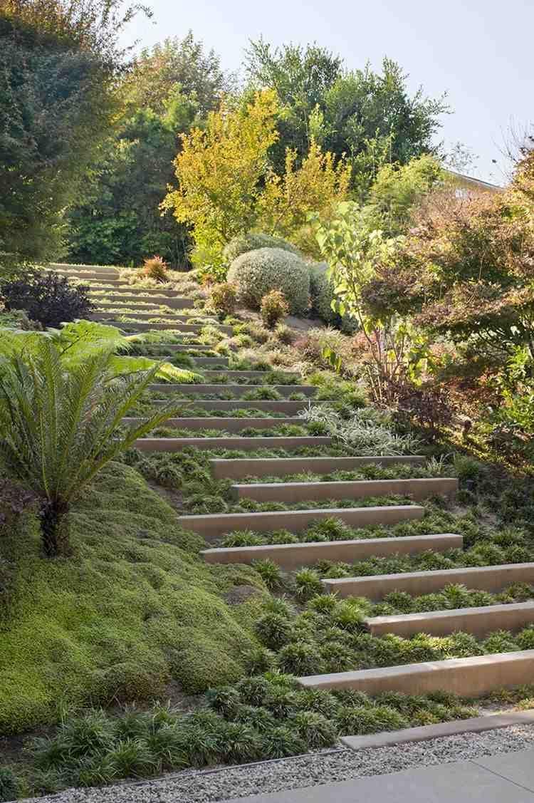 escalier extérieur à marches végétalisées–l'accent dans un jardin en