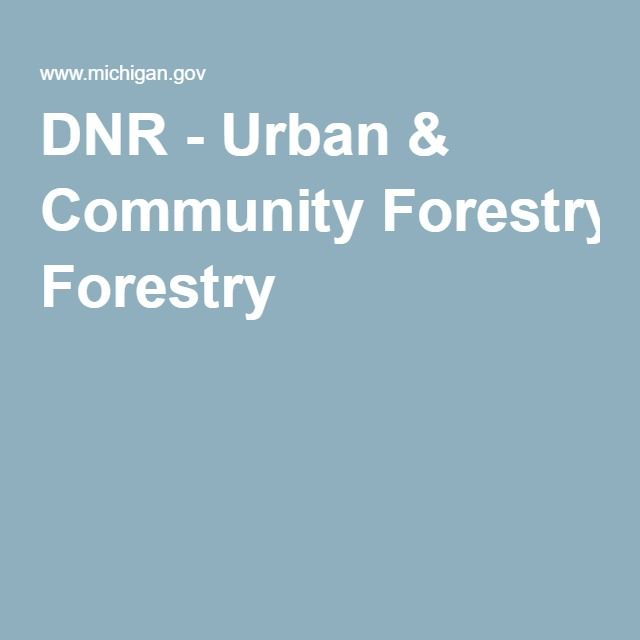 DNR - Urban & Community Forestry