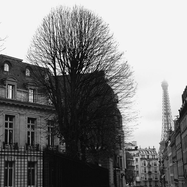 Winter greys in Paris. Photo courtesy of lovingjune on Instagram.