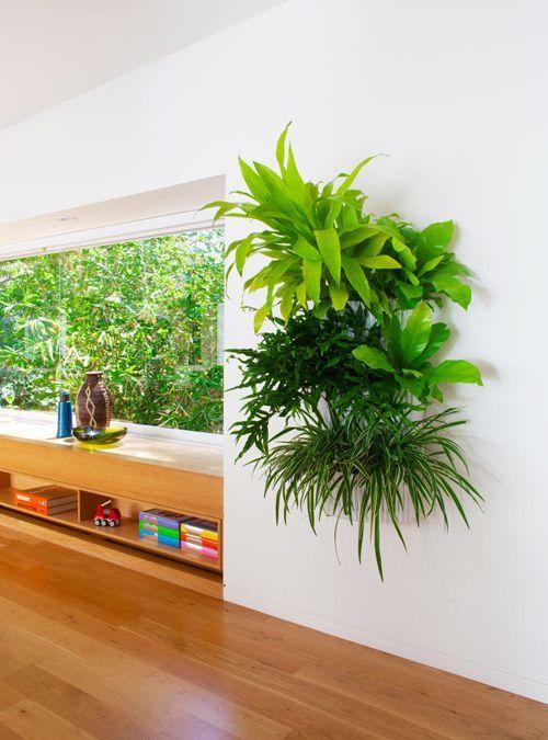 Creative Indoor Vertical Wall Gardens Best Hanging Plantshanging