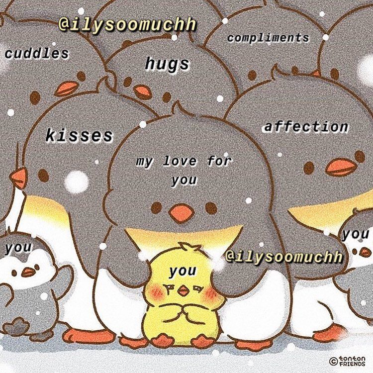 Follow Me For More Ilysoomuchh Original Picture From Tonton Friends Purememes Memes Selflove Cute Love Memes Cute Memes Cute Love Wallpapers
