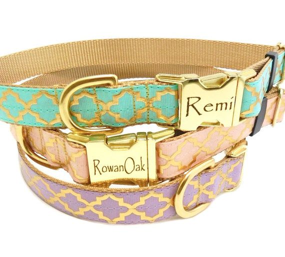Gold Dog Collar In Quatrefoil Gold Personalized Buckle Collar