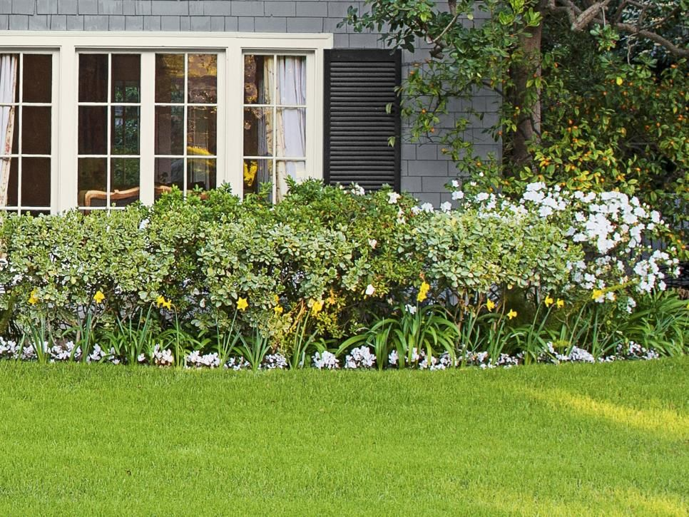 Copy The California Curb Appeal. Front Yard FlowersFront Yard  LandscapingLandscaping IdeasHgtv MagazineBackyard ...