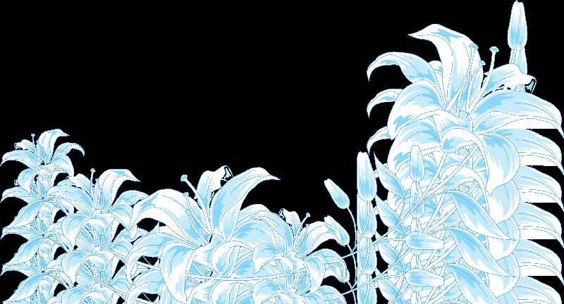 Flores Ilustraciones Png Para Artesania: Pin De Maria Julieta Sobalvarro Roa En Bordes, Cenefas