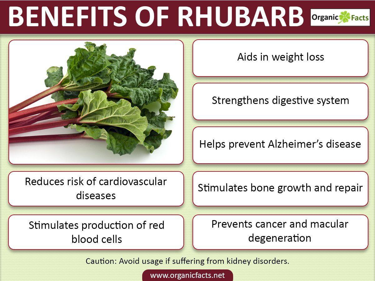11 amazing rhubarb benefits | rhubarb benefits, rhubarb, health