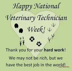 It S National Vet Tech Appreciation Week Please Call Your Local Veterinary Practice And Talk To A T Vet Tech Quotes Veterinary Tech Veterinary Technician Week