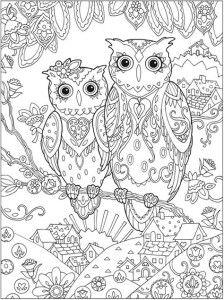 Раскраска для взрослых две совы картинка | Раскраски ...