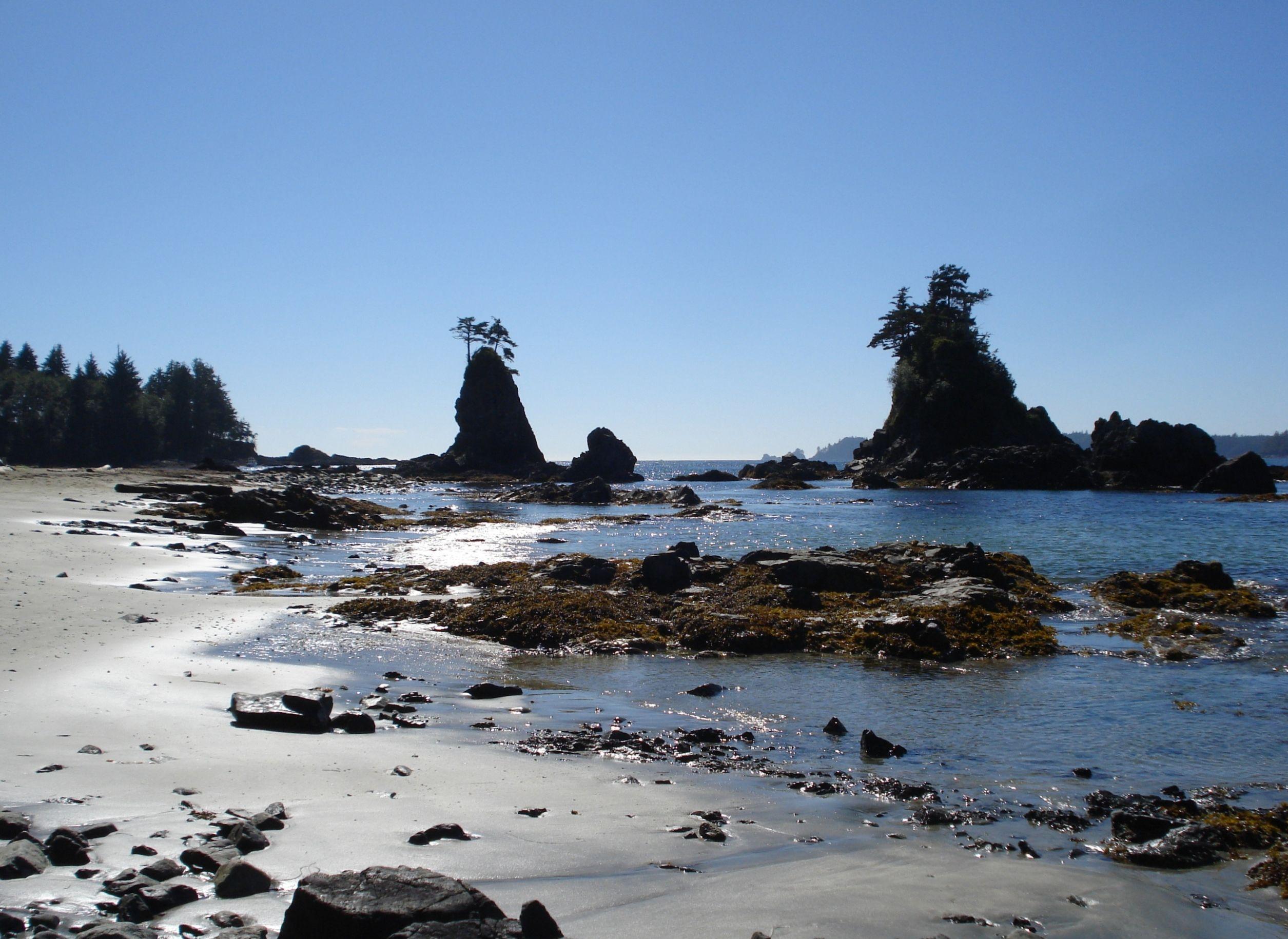 Brady S Beach Bamfield Bc Vancouver Island Bc Canada