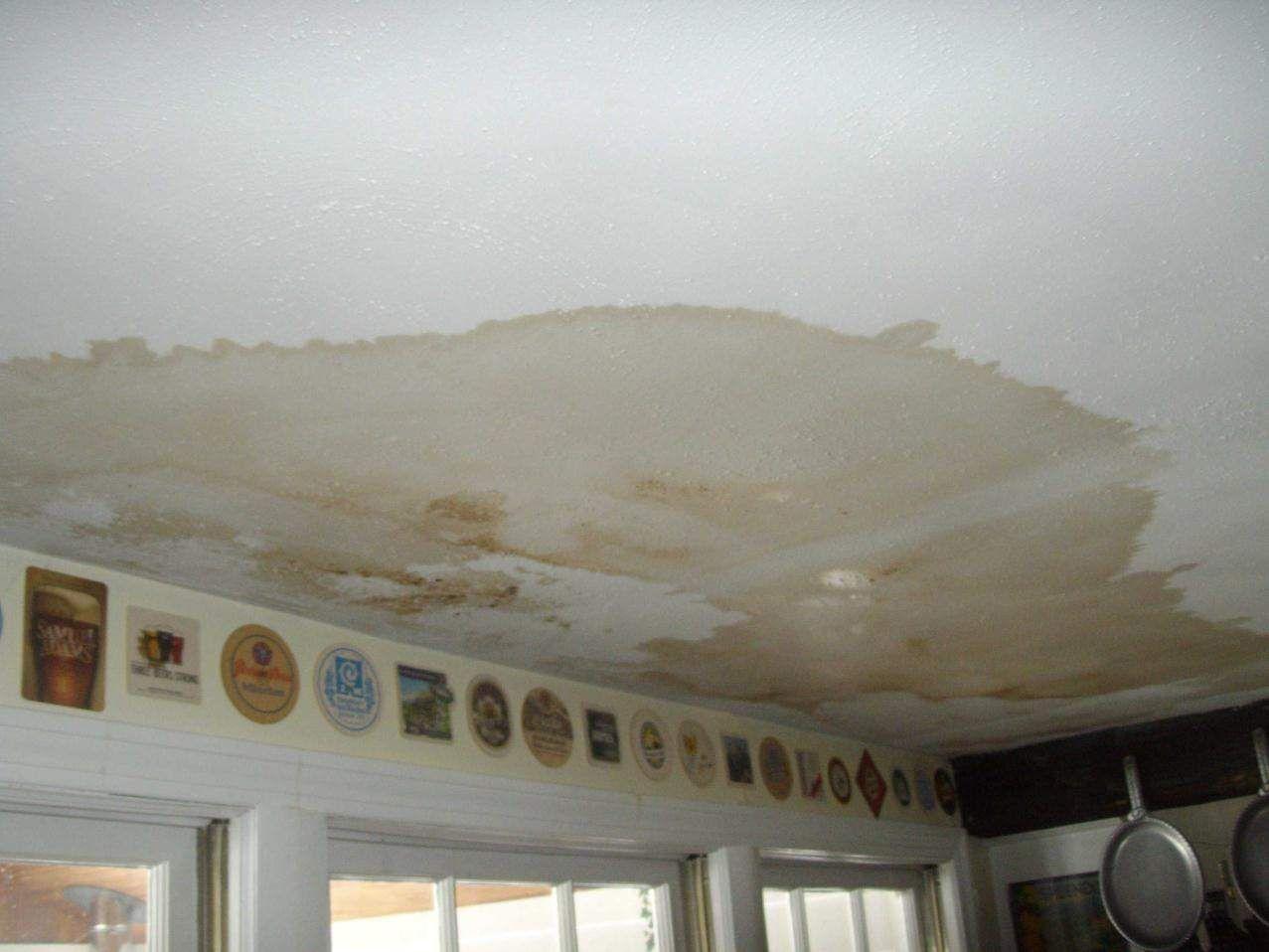 Water Damage Problems Bonita Springs Repair Ceilings Mold On Bathroom Ceiling Water Stain On Ceiling