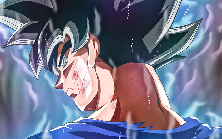 Download Wallpapers 4k Ultra Instinct Goku Back View Dbs Dragon Ball Super Saiyan God Fire Dragon Ball Super Migatte No Gokui Mastered Ultra Instinct B Goku Wallpaper Goku Ultra Instinct Wallpaper