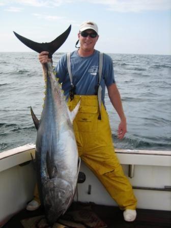 Bluefin Tuna | Fish I Want to Catch | Tuna, Fish, Sports