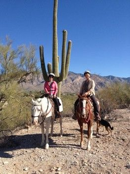 Top Picks in Tucson, Arizona. If you're a lover of all things desert, this is your kind of place!
