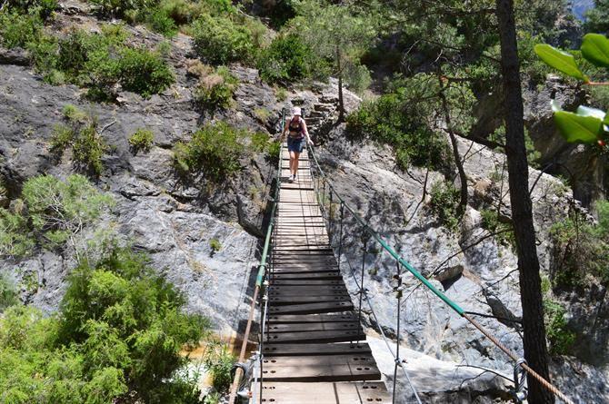Hanging bridge Junta de los Rios