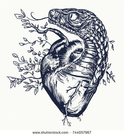 Snake And Heart Tattoo Symbol Of Love Envy Evil Snake The