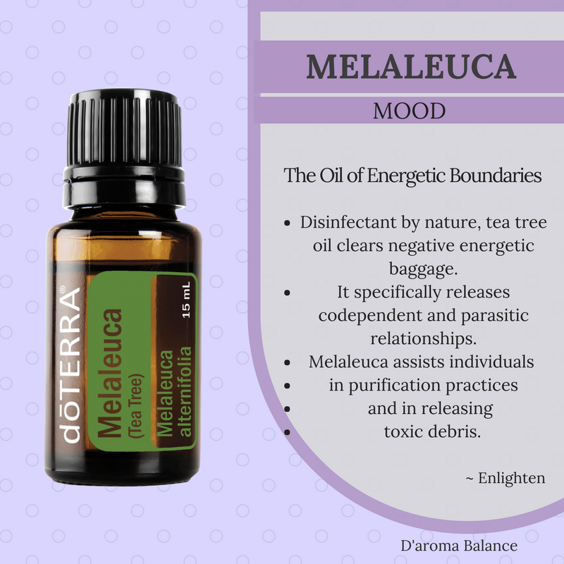 Tea Tree Oil Melaleuca Essential Oil dōTERRA Essential