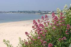 Keraluic kleine groene familie Camping, vakantiehuisjes in plomeur finistere Bretagne op maar 5km van het strand
