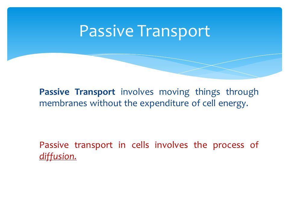 Membrane Transport I Passive transport - ppt download biology 1