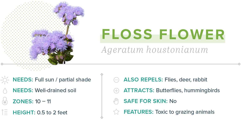 15 Plants That Repel Mosquitoes #plantsthatrepelmosquitoes