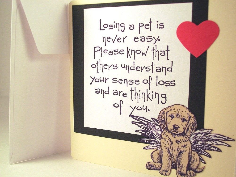 Dog sympathy card for dog death and loss of pet Quotes that I love