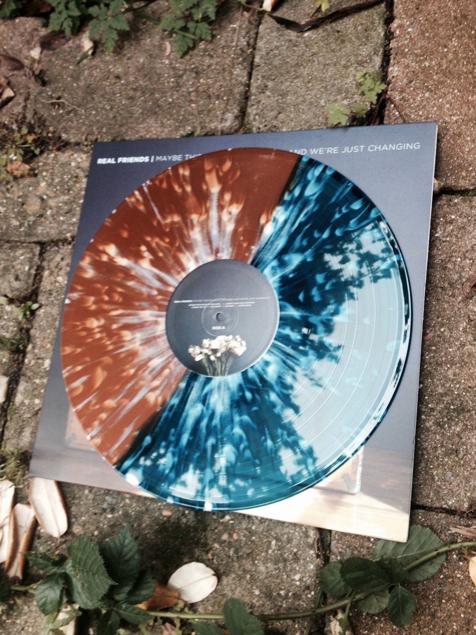 Real Friends Vinyl In 2019 Vinyl Record Player Vinyl