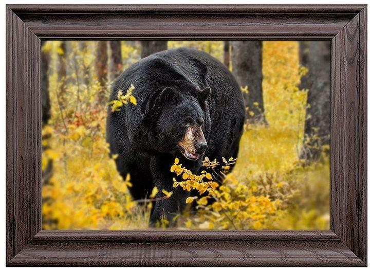 Reflective Art Fall Black Bear Framed Wall Art   RUSTIC HOMES ...