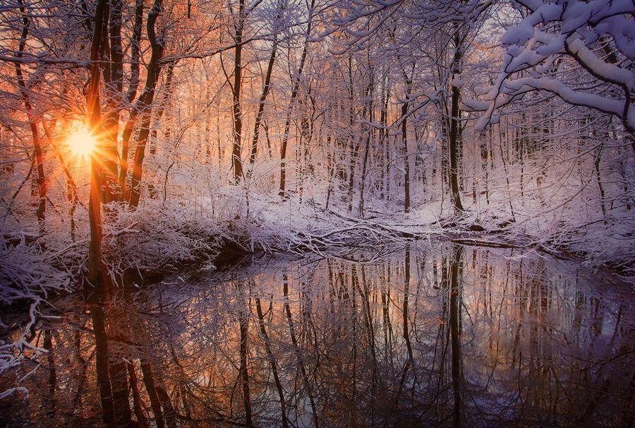 Winter Reflections Photo Winter Landscape Winter Photography Nature Photography
