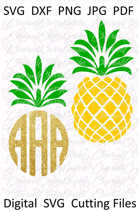 Pineapple Monogram Svg Pineapple Svg Summer Svg Tropical Svg Monogram Frame Pineapple Monogram Monogram Svg