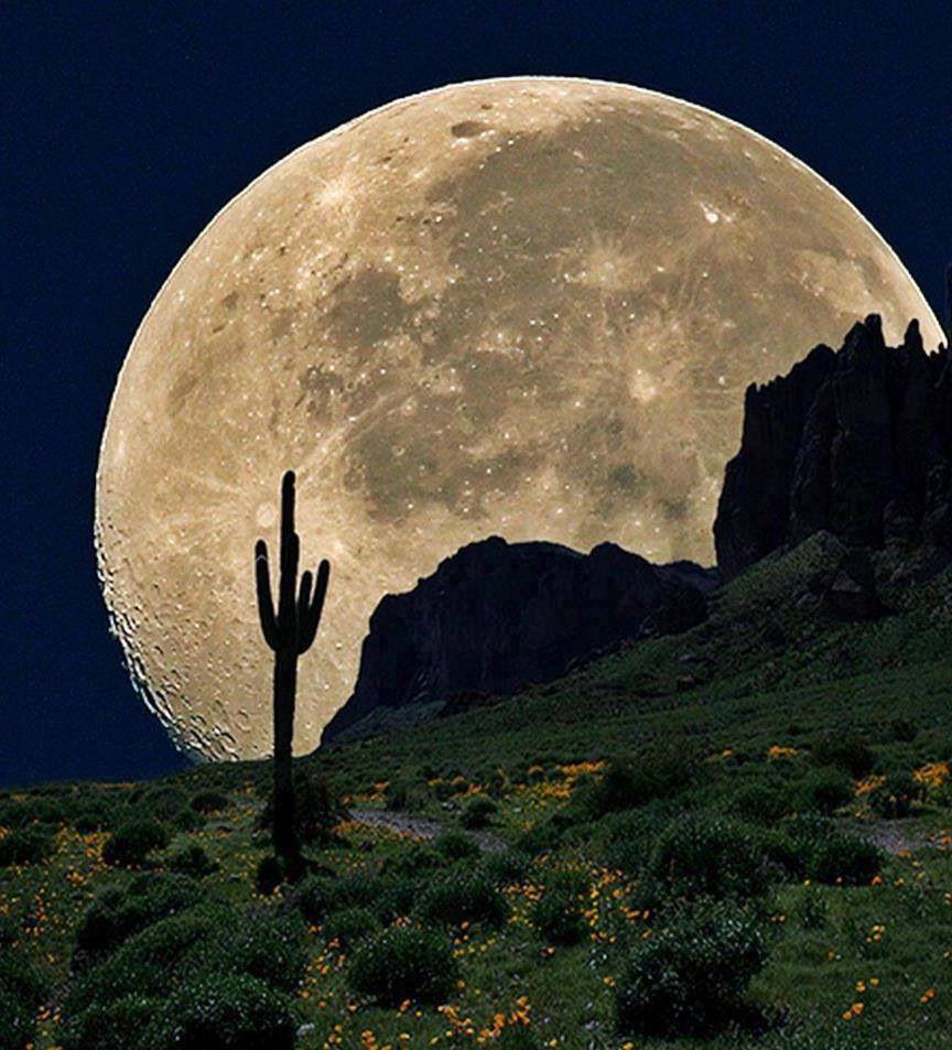 готовы, фотографии полумесяц луны спальный гарнитур