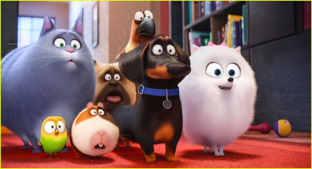 Secret Life Of Pets Cast Meet The Voices Of The Characters