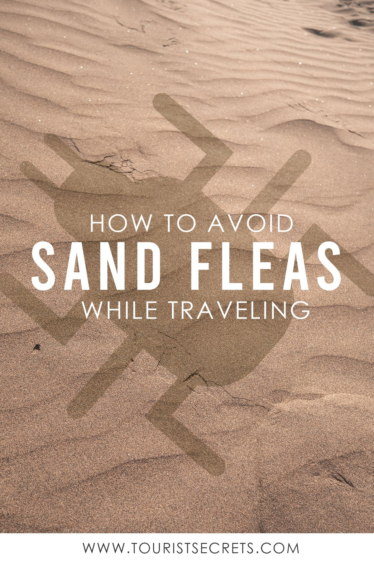 How To Avoid Sand Fleas While Traveling Sand Fleas Beach Hacks Travel