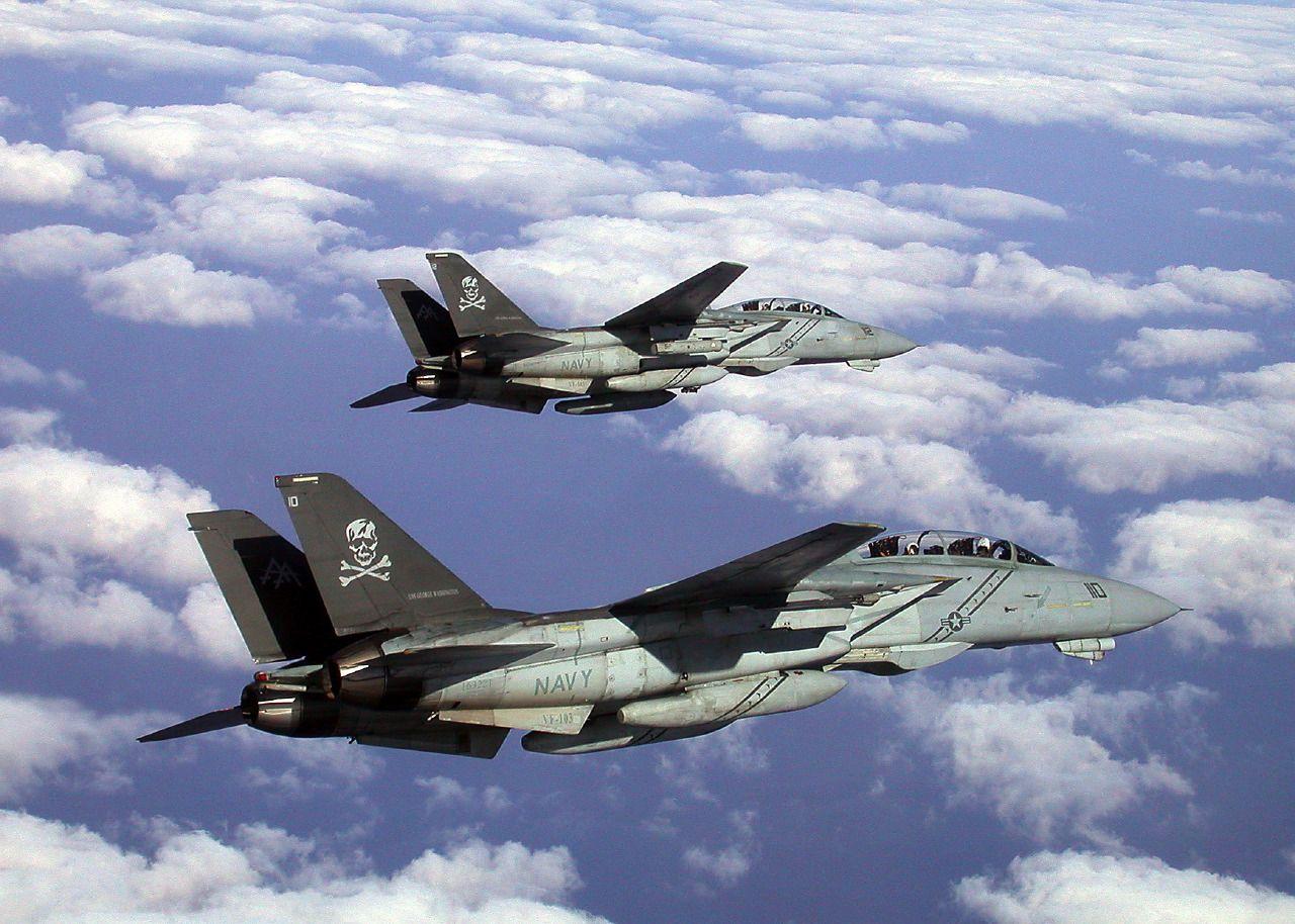 F 14d Vf 103 Jolly Rogers F14 トム キャット 戦闘機 グラマン